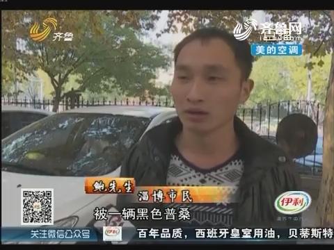淄博:二手奔驰刚到手 转身被打又被抢
