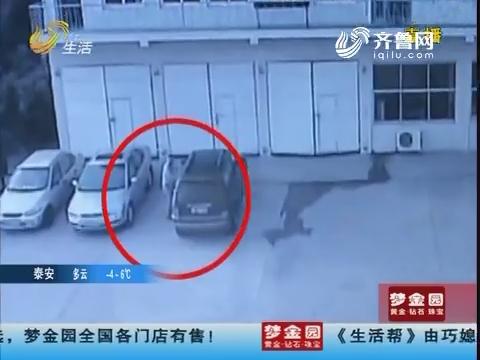 烟台:荒唐!为逃处罚 开走被扣车