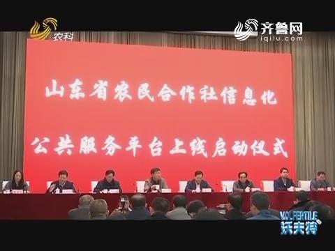 山东农民合作社交易平台上线