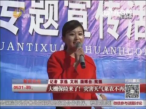 淄博:大棚保险来了!灾害天气菜农不再愁