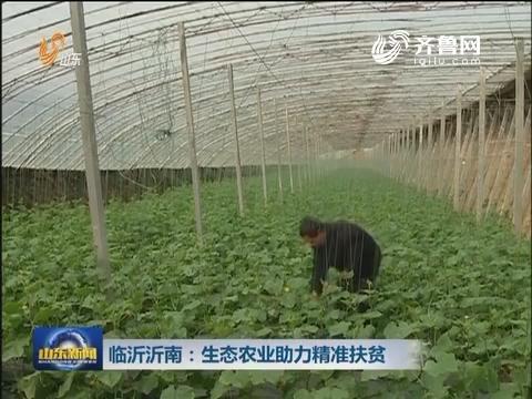 临沂沂南:生态农业助力精准扶贫