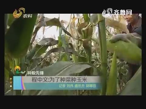 种粮先锋:程中文为了种菜种玉米
