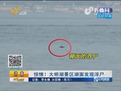 济南:惊悚!大明湖景区湖面发现浮尸