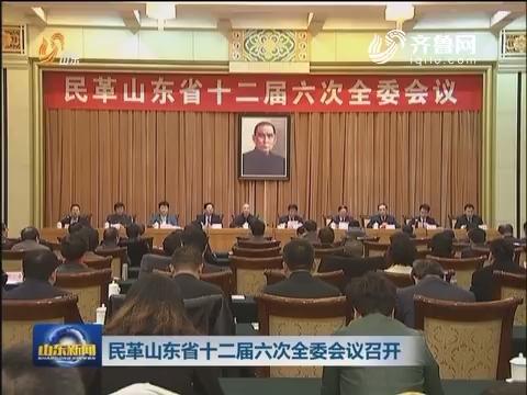 民革山东省十二届六次全委会议召开
