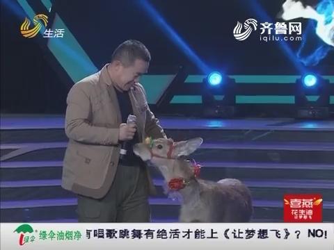 """让梦想飞:乔发亮带着宠物鹿""""翠花""""来到舞台 一首陕北民歌技惊四座"""