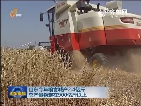 山东2016年粮食减产2.4亿斤 总产量稳定在900亿斤以上