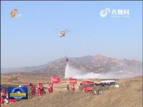 2016扑救森林火灾地空合成实战演练在莱芜举行