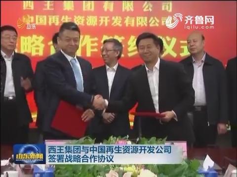 西王集团与中国再生资源开发公司签署战略合作协议