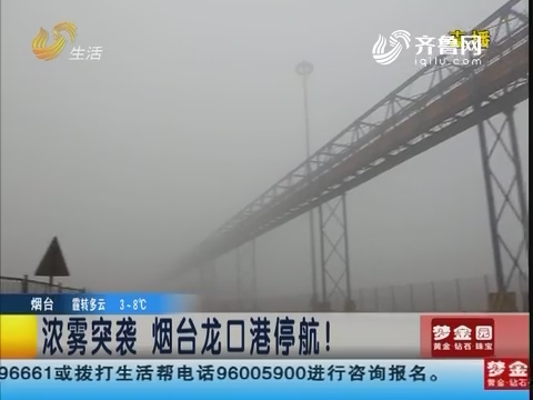 浓雾突袭 烟台龙口港停航!