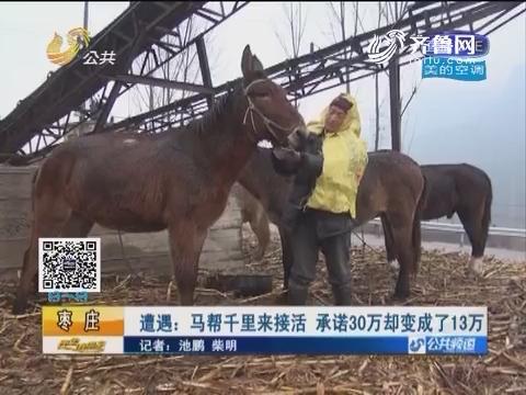 枣庄:遭遇 马帮千里来接活承诺30万却变成了13万