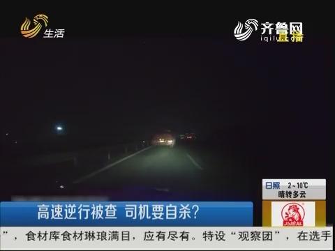 烟台:高速逆行被查 司机要自杀?