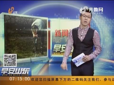 【新闻早评】浙江丽水:一官员喝河水 曾发誓治不好水就趴下喝