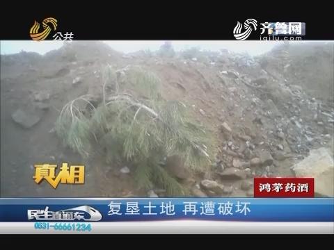 【真相】临沂:复垦土地 再遭破坏