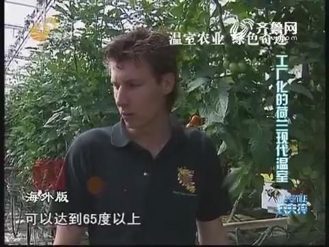 温室农业 绿色奇迹