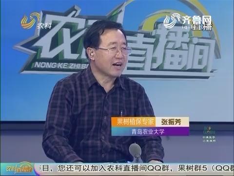 20170116《农科直播间》:如何种好果树