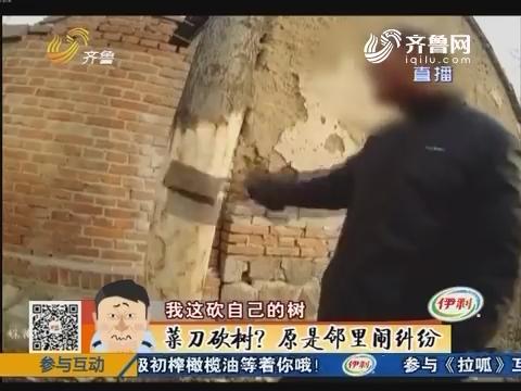 淄博:菜刀砍树?原是邻里闹纠纷