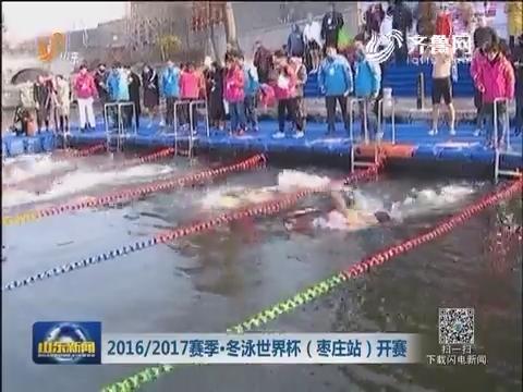 2016/2017赛季·冬泳世界杯(枣庄站)开赛
