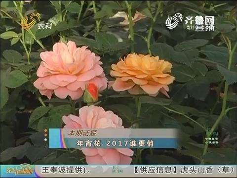 20170117《农科直播间》:年宵花 2017谁更俏