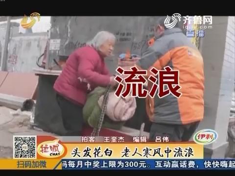 济南:头发花白 老人寒风中流浪