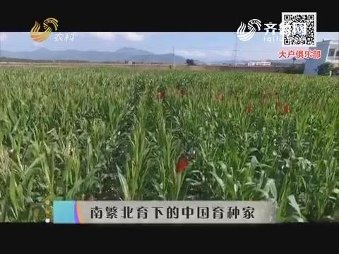 南繁北育下的中国育种家