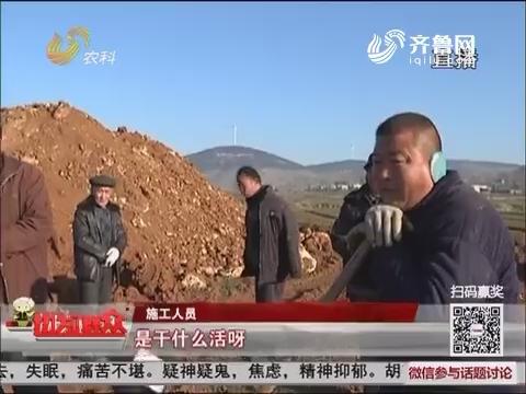 【独家调查】枣庄山亭:文王墓上竖起高压线塔?