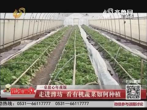 【一桌放心年夜饭】走进潍坊 看有机蔬菜如何种植