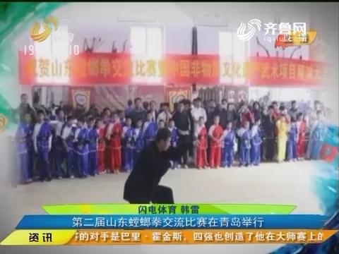 闪电速递:以武会友弘扬传统 第二届山东螳螂拳交流比赛在青岛举行