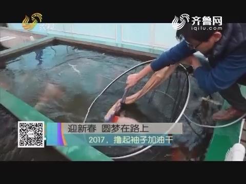迎新春 圆梦在路上——2017,撸起袖子加油干