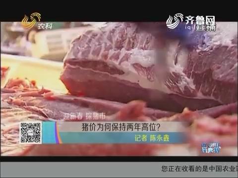 迎新春 探猪市:猪价为何保持两年高位?