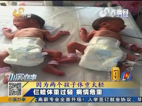 莱芜:二胎诞下三子 罕见同卵三胞胎
