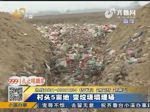 聊城:村头5亩地 变垃圾填埋场
