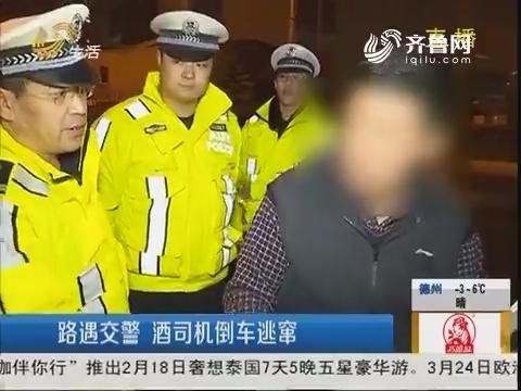 青岛:路遇交警 酒司机倒车逃窜