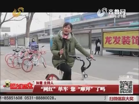 """济南:""""网红""""单车 您""""摩拜""""了吗"""