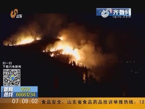 枣庄峄城:元宵节傍晚白马山突发山火