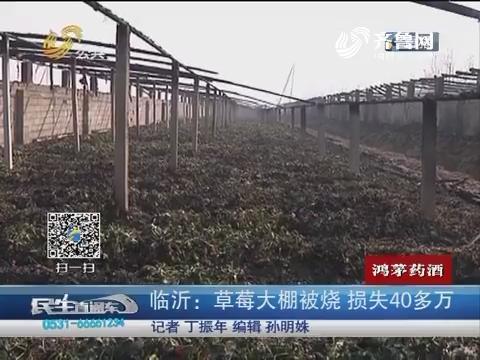 临沂:草莓大棚被烧 损失40多万