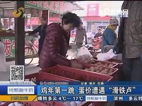"""济南:鸡年第一跳 蛋价遭遇""""滑铁卢"""""""