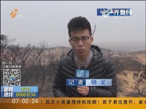 烟台北磁山大火:起火原因疑似非法狩猎