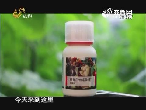 20170222《当前农事》:杜邦增威赢绿杀菌剂