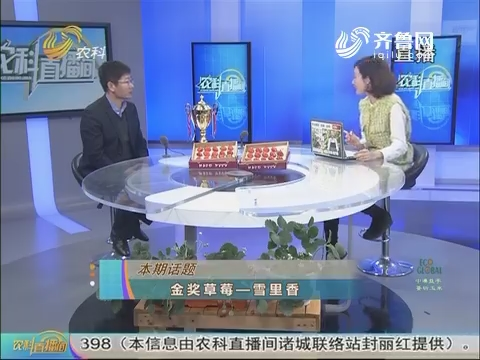 20170223《农科直播间》:金奖草莓出唐王