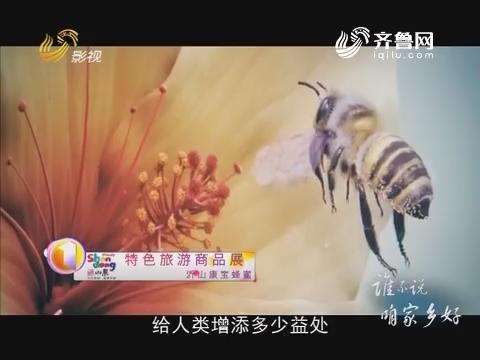 20170223《谁不说咱家乡好》:沂山康宝蜂蜜