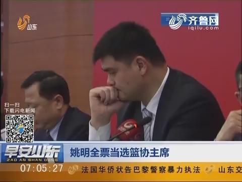 姚明全票当选篮协主席