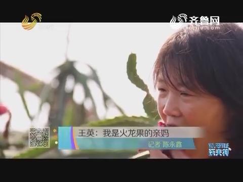 王英:我是火龙果的亲妈