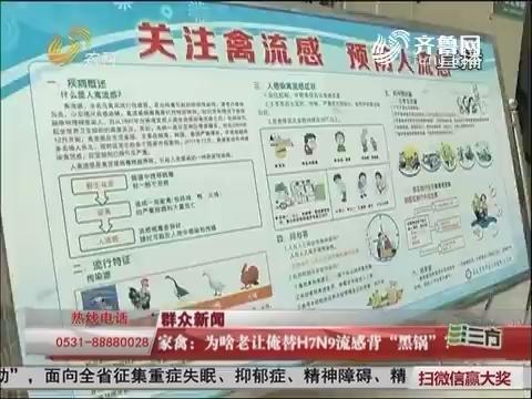 """【枣庄】家禽:为啥老让俺替H7N9流感背""""黑锅""""?"""