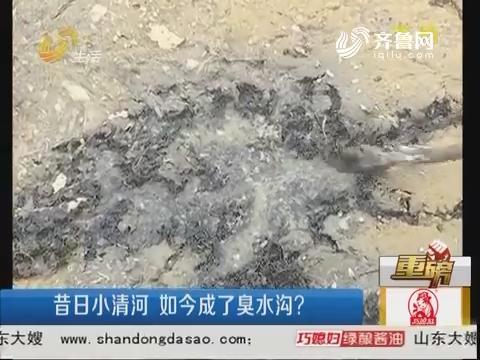 【重磅】潍坊:昔日小清河 如今成了臭水沟?