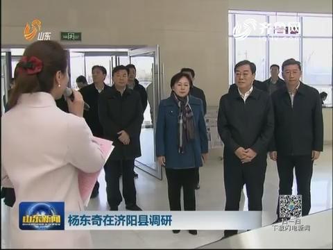 杨东奇在济阳县调研