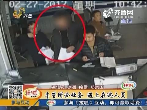 东平:车管所办业务 遇上在逃人员