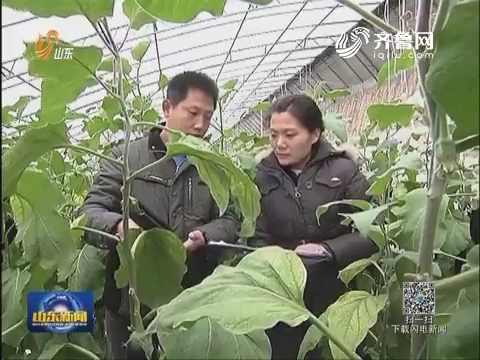 全国首个食品农产品技术性贸易措施研究评议基地落户潍坊