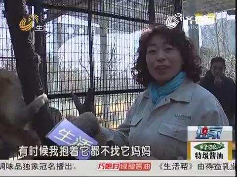 """【长大后我就成了你】济南:动物饲养员""""臭味""""中坚守30年"""