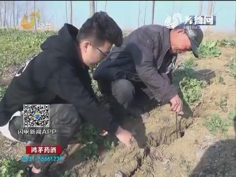 枣庄:地面突然裂缝 道路下沉2米