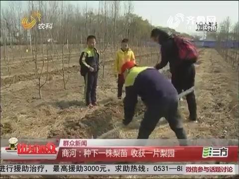 【群众新闻】商河:种下一株梨苗 收获一片梨园